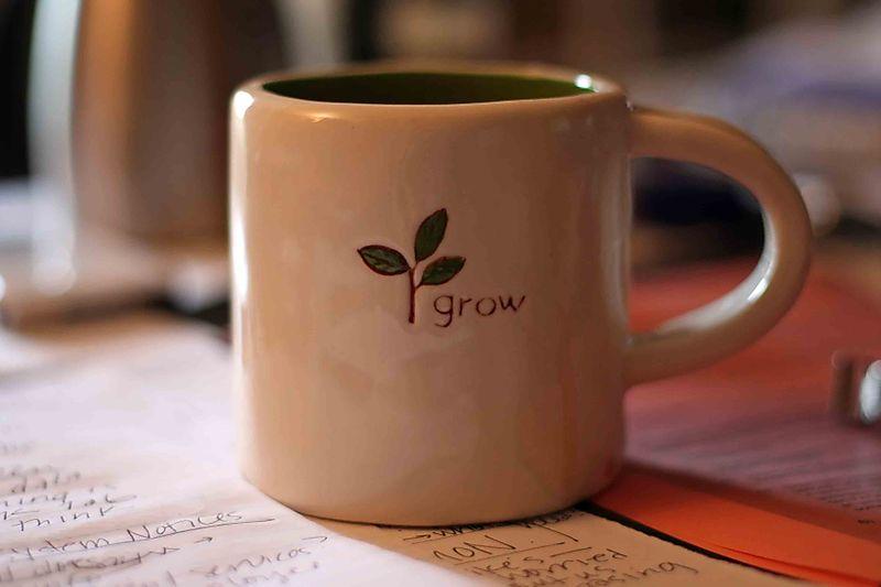 26054 my new favorite mug_filtered