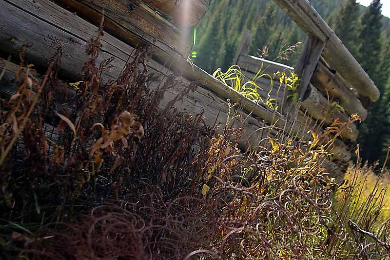 30564 lens flare_edited-1