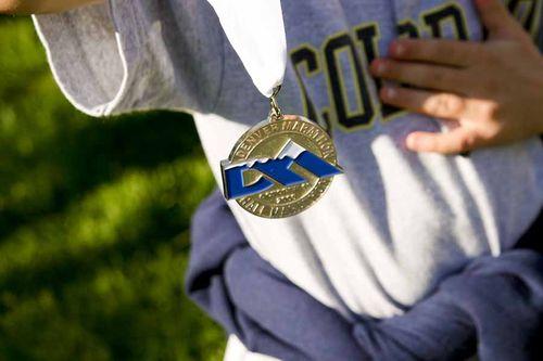 33076 medal