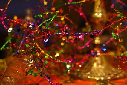Christmas-IMG_7878_filtered